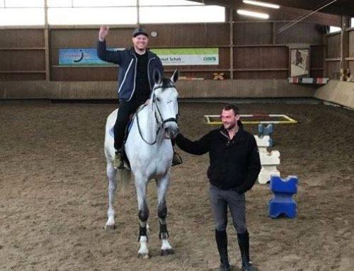 Pferdegestütztes Persönlichkeitstraining
